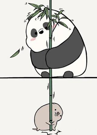 竹鼠和竹熊 截图1